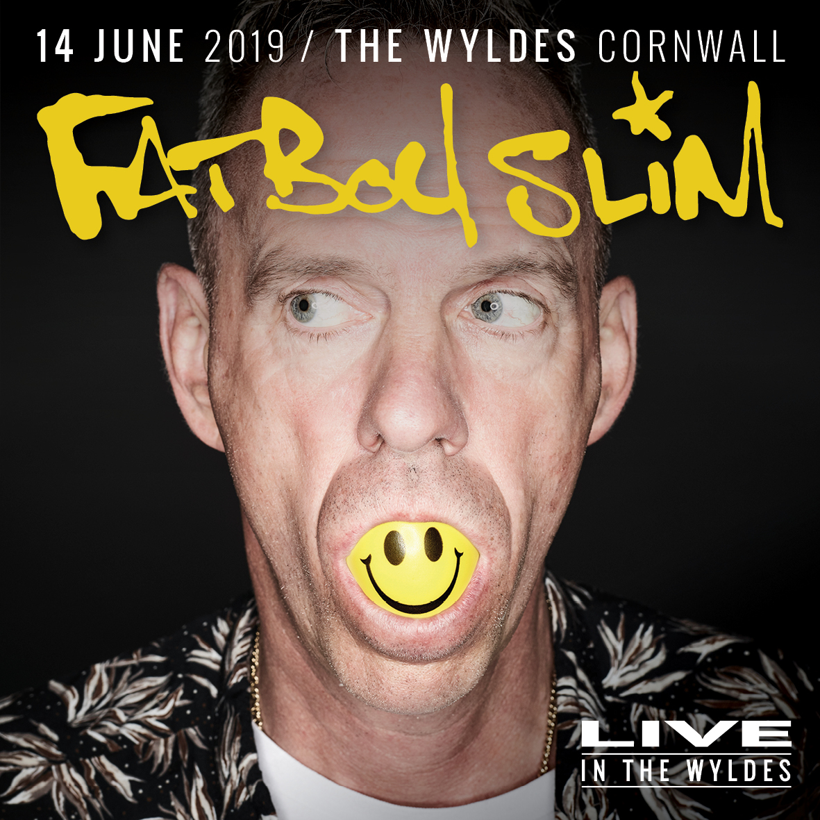 Gigs Image 1 for The Wyldes, Cornwall, UK